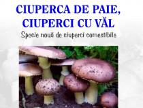 Carti tehnice, ciuperci,albine,prepelite, curcani, miere