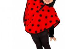 Costum pentru serbari si petreceri-Mamaruta