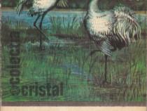 Minunata lume a pasarilor Autor(i): I.Bordeianu
