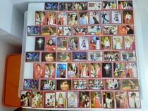 Cartonas / cartonase High School Musical 64 bucati - Noi