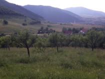 Teren, 4000 mp. in Gura-Râului, zona Mãrãjdie, jud Sibiu