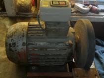 Motor electric polizor.
