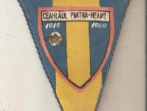 Fanion Ceahlaul 1919-1969