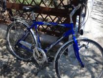 Bicicleta frera italia