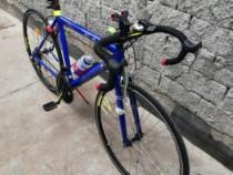 Bicicleta cursiera