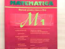 Manual de matematica pentru clasa a XI-a M1, Burtea