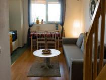 """Cazare - Apartament Regim Hotelier """"17 Horses Studio"""""""