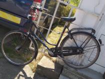 Bicicleta damă belgia Gazele 28 schimbător în butuc 5 viteze