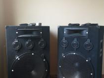 Boxe 1000 Wați Bucata și Microfon Shure Sm 58