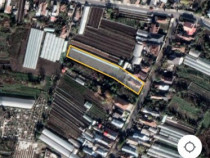 Casa +gradina+teren  2442 mp vidra-ilfov