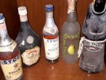 Cinci sticle de colectie