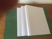 Servicii de arhivare si legatorie