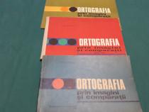 ORTOGRAFIA PRIN IMAGINI ȘI COMPARAȚII / 3 VOL. ION P. NECULA