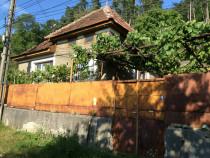 Casa cu gradina mare Cugir, Alba