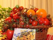 Rasaduri rosii ardei castraveti vinete alte rasaduri legume