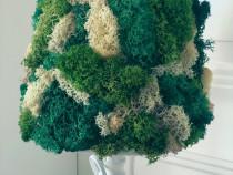 Lampa home made cu licheni decorativi