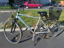 Bicicleta Triumpf