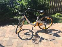 Bicicleta de oras, foarte solida, model OBike 26