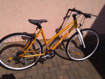Bicicleta, Dama, DHS, Origin '99