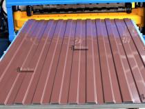 Producator tabla cutata colorata / vopsita lucios de 0,40 mm