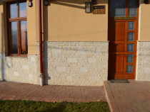 Piatra naturala vistea si Gold transilvania