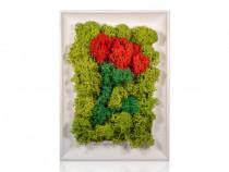 Tablou Licheni cu flori in 3 culori