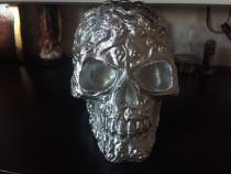 Craniu decorativ deosebit