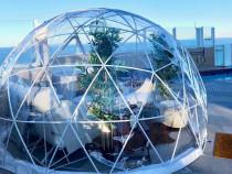 Cort igloo transparent 12 mp,structura metalica,sera,terasa