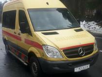 Mercedes Sprinter 311 Ambulance Pet Taxi