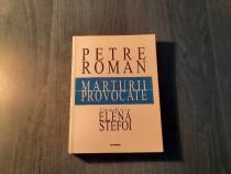 Marturii provocate Petre Roman convorbiri cu Elena Stefoi