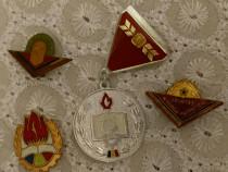Lot de insigne Românești