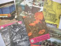 Lot Revista Apicultura 1983