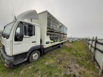 Camion apicol MAN