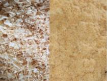 Tocatura lemn: Rumegus si Talas