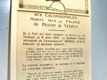C20-Columbofilia-Porumbeii morti Franta Verdun Vaux 1914-18.