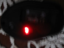 Mouse optic