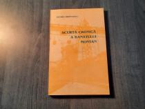 Scurta cronica a Banatului montan Georg Hromadka