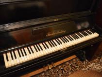 Pianina Theodor Betting