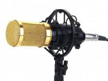 Microfon Profesional BM800, cu inregistrare vocala si Karaok