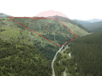 Pădure de vânzare în Maramureș, suprafață 27,04 ha ...