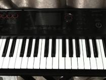 Orga Roland FA-06