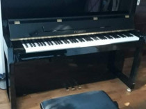 Pianina Feurich