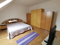 INCHIRIEZ apartament 2 camere la mansarda,zona Lazaret