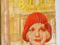 C915-Cetatea lui Bucur-Colectia Marimi: 16/ 12 cm.