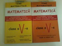 Petrus Alexandrescu-Teme matematica clasa a V a