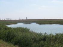 Investitie balti pescuit 19-51 ha, jud Ialomita