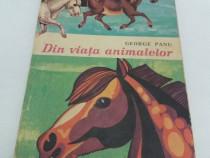 Din viața animalelor/ george panu/ ilustrații nicolae săftoi
