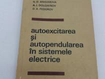 Autoexcitarea și autopendularea în sistemele electrice/ v.a.