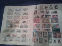 Album colectie de timbre foarte vechi
