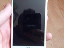 Schimb iphone 6s gold cu pitbull,amstaff
